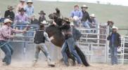 Bungendore Rodeo 2