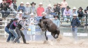 Bungendore Rodeo 3