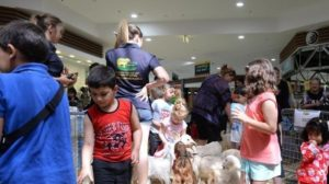 Sign Petition Against Petting Zoo @ the Multicultural Festival