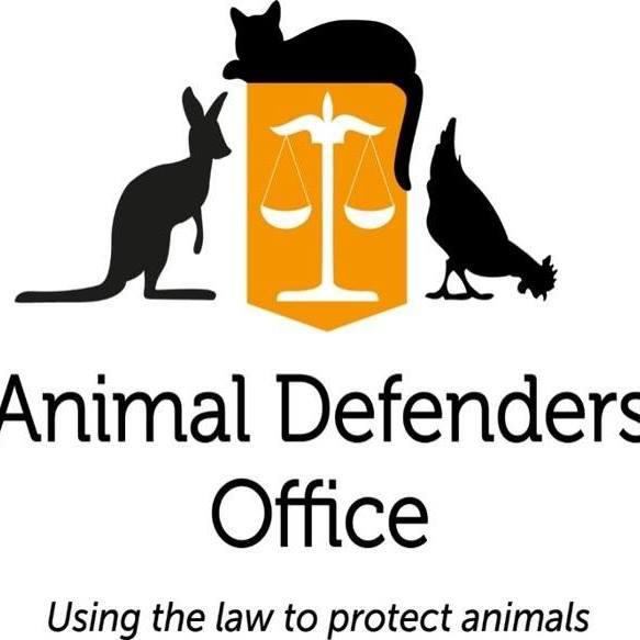 ADO Seminar – Animals:  The forgotten victims of domestic violence – Thursday, 18 May 2017