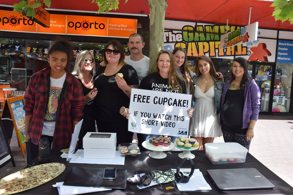Volunteer for Cupcake Challenge – Saturday, 26 May 2018