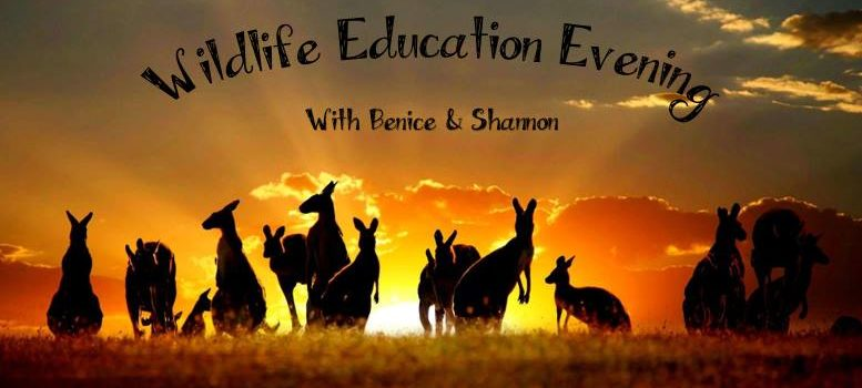 (New Venue!) Wildlife Education Evening with Benice & Shannon! – Tuesday, 22 May 2018
