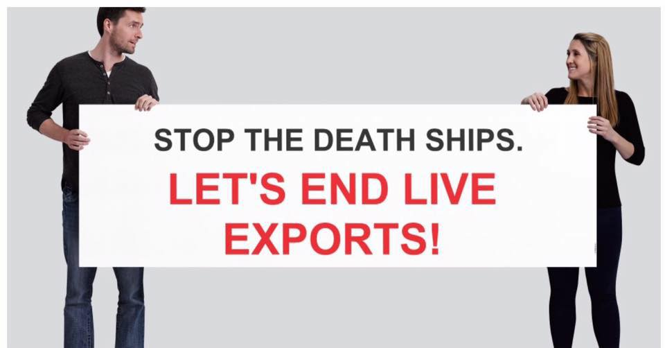 End Live Export Protest March – Tuesday, 21 August 2018