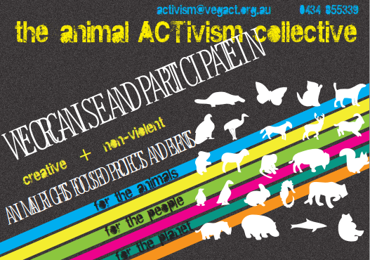 animalACTivism Flyer