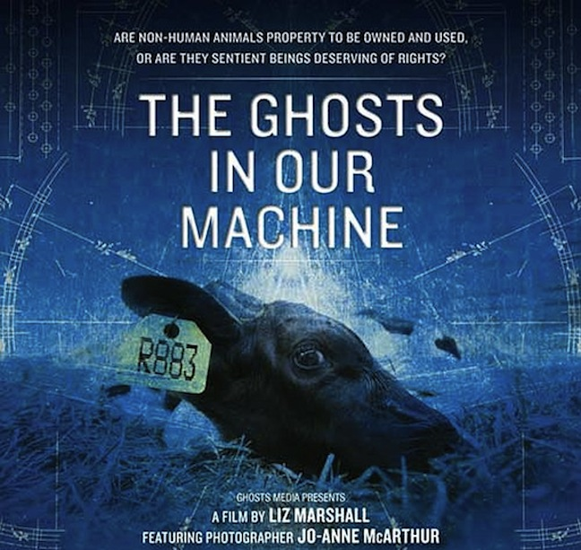 The Ghosts in Our Machine – Film Review by Jacky Sutton
