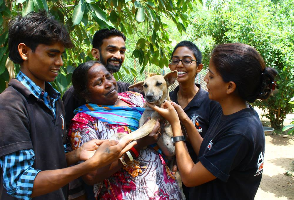 Donate to India's ANIMAL AID: Medicine for Wounded Street Animals