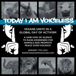 'Today I Am Voiceless' 24 Hour Vow of Silence and Outreach Event – Sunday, 17 January 2016