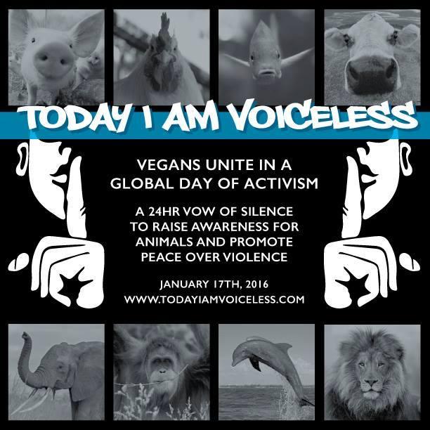 Voiceless 2016