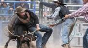 Bungendore Rodeo 4