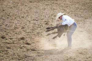 Take action against Rodeos – Written by Little Oak Sanctuary