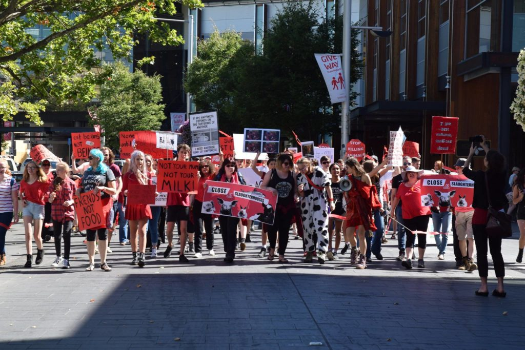Join Canberra March to End All Slaughterhouses – Saturday, 16 June 2018